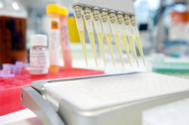 BioFocus will use its drug discovery platform to deliver leads and clinical candidates for its client