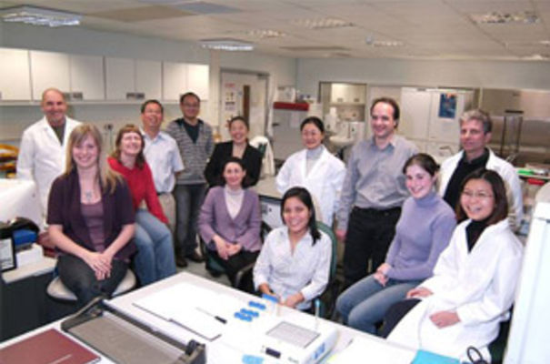 Helen Lee's team at Diagnostics for the Real World