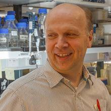 Professor Bertie Gottgens, whose research team is based at the University's Cambridge Institute for Medical Research